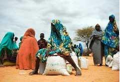 jpg_faim-afrique.jpg